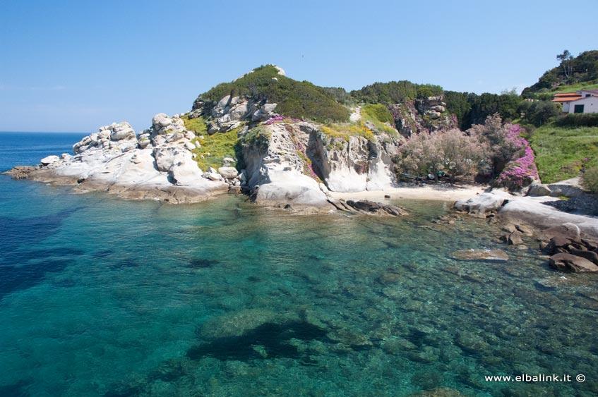 Appartamenti Vacanze Isola D Elba